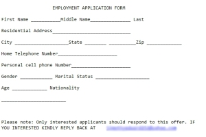 Sample fake application.