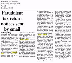 Irish Examiner printed 03.01.2014