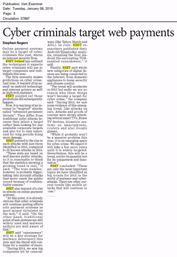 Irish Examiner 06.01.2014