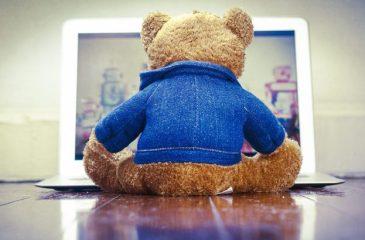 teddy-623x410