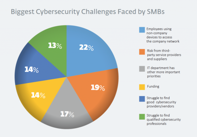 Pg7-Cybersecurity-Challenges-768x535.png